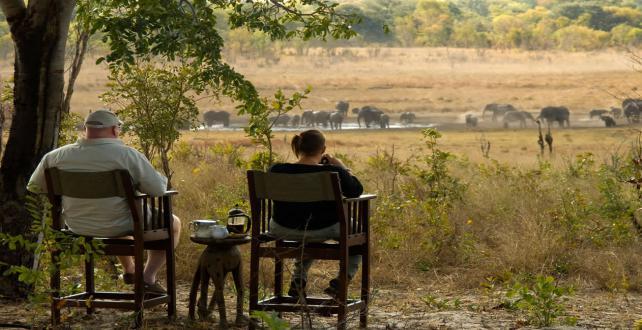 Safari Special: Holiday Special at Hwange National Park (Zimbabwe)..