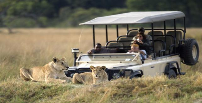 Safari Special: Delta & Chobe, Pay 4 and stay 6 nights..