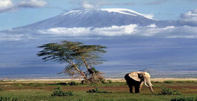 Safari Trip Ideas: 5 days safari through Tanzanias northern circuit ..