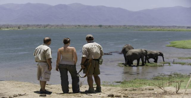 Safari Special: 7 day Mana Pool National Park Explorer..