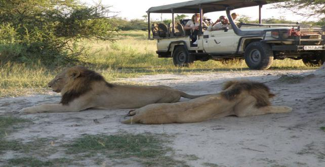 Safari Trip Ideas: 3 nights Authentic Kruger National Park Safari ..