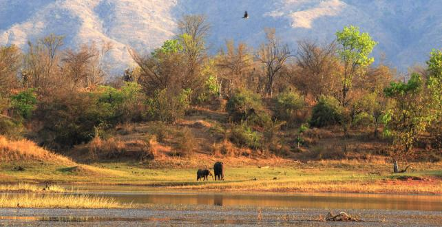 Safari Trip Ideas: 11 Days / 10 Nights Highlights of Zimbabwe..