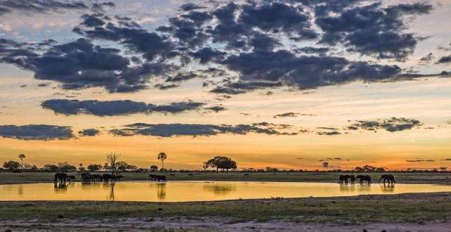 Safari Special: 7 Day Victoria Falls & Hwange in Style..