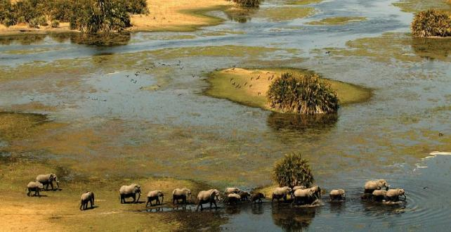 Safari Special: 9 Day Botswana & Victoria Falls Mobile Adventure Safari..