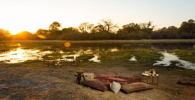 Safari Special: 7 Day Delta Luxury Safari Special - 2 Free Nights..